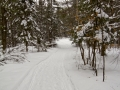 2012 Carp Woods Ski Trail
